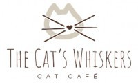 The Cat's Whiskers (Goodramgate, York)