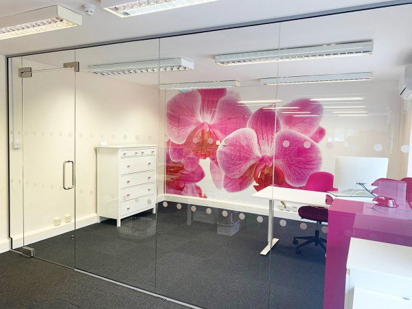 Access Care Management (Andover, Hampshire): Inline Frameless Glass Partition with Single Frameless Glass Door