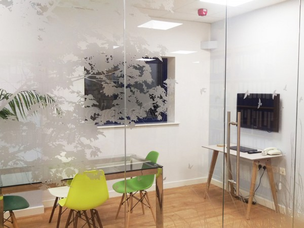 Bodywise UK Ltd (Filton, Bristol): Frameless Glass Office Partitions