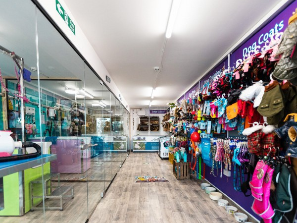 Woofs n Scruffs (Sunderland, Tyne and Wear): Shop / Retail Frameless Toughened Glass Walls and Doors
